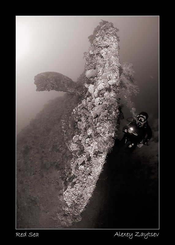 зайцев, затонувший корабль, винт, рулевое оперение, дайвер, Алексей Зайцев