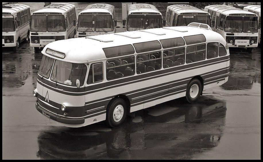 автобус, , лаз, , 695е, , история, , город, , транспорт, , нтв, Александр Абалихин