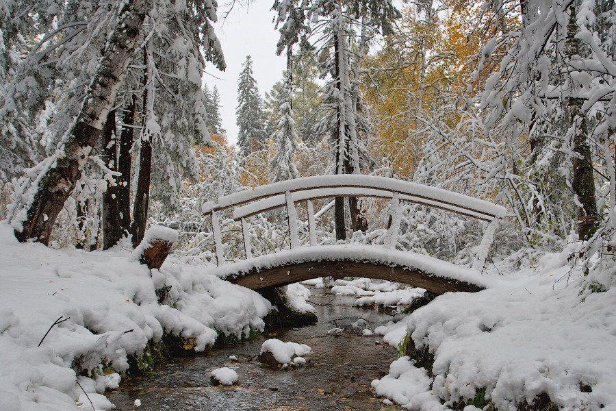 бурятия, улан-удэ, сентябрь, снег, снегопад, Олег Шубаров