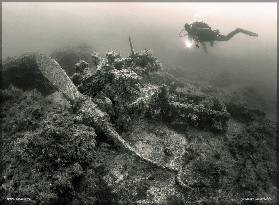 черное, море, херсонес, истребитель, самолет, рэк, anatoly, beloshchin, подводное, фото, Anatoly  Beloshchin