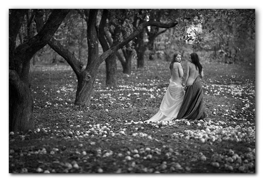 осень, ню, яблоневый сад, яблоки, девушки, Андрей (SCAT)