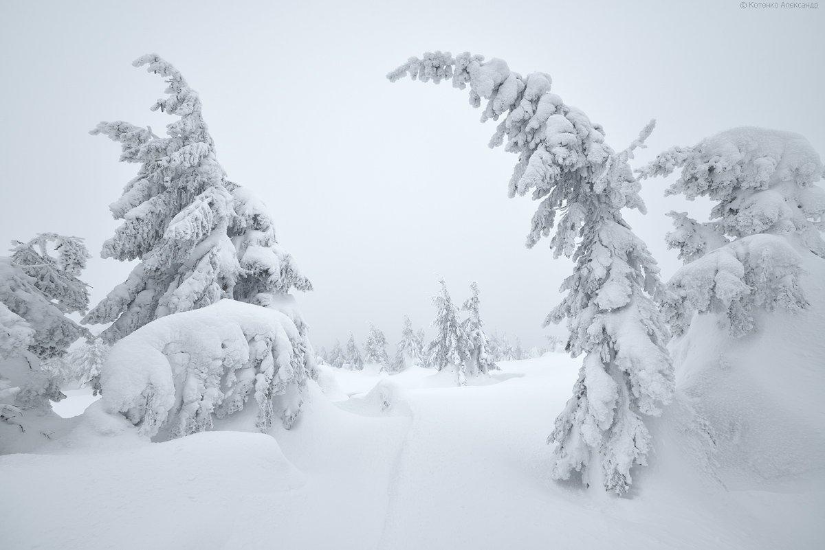 Зима, Карпаты, Александр Котенко