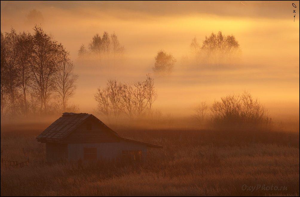 утро, рассвет, туман, дом, Оксана Борц
