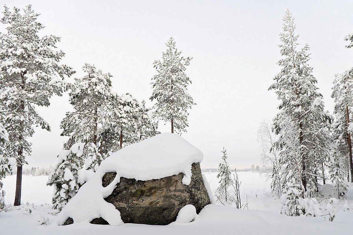 берег, зима, север, Карелия, снег, озеро, Ирина Белотурова