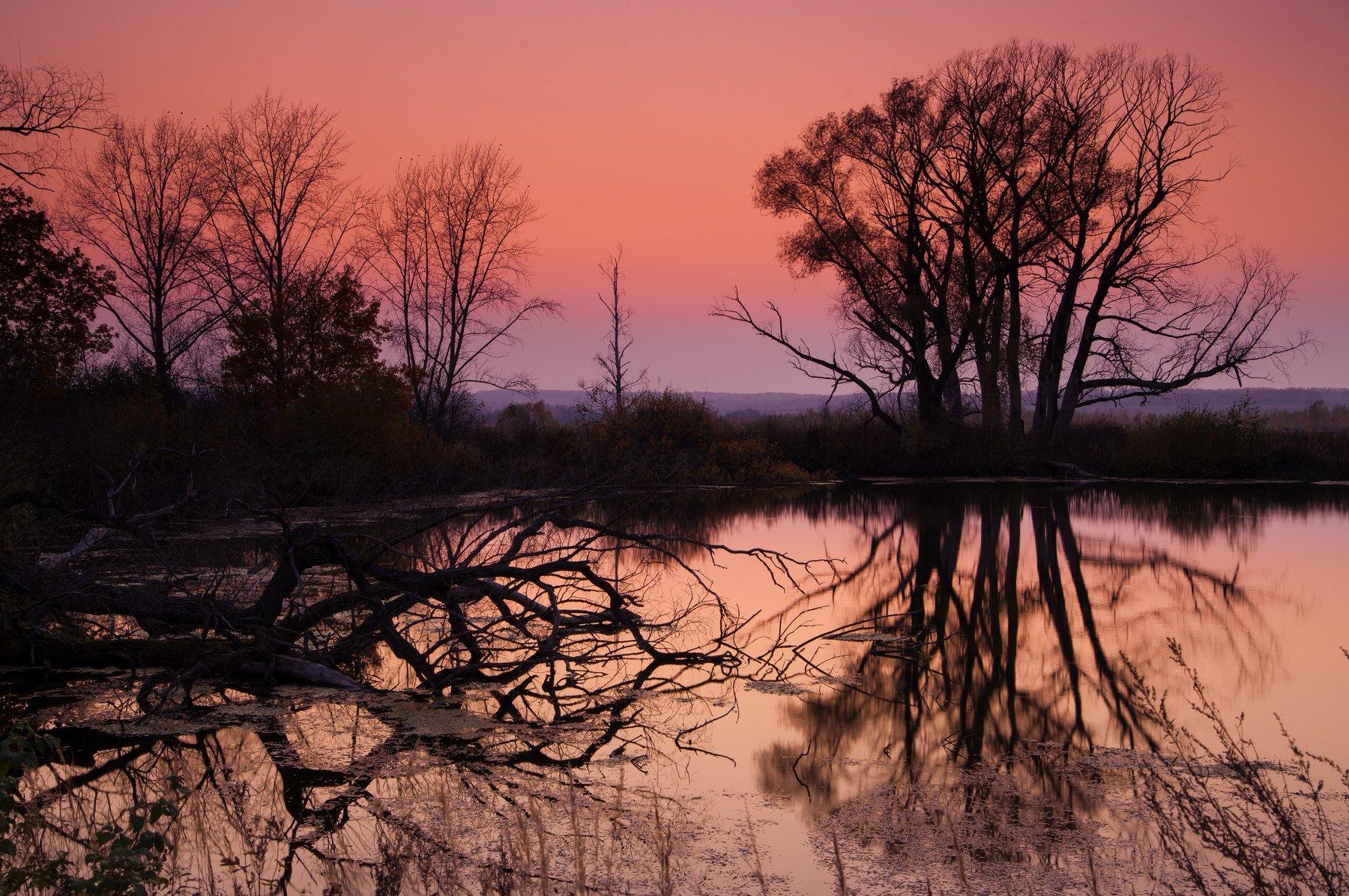 вечер, осень, закат, озеро, отражение, деревья, Иван Куликов