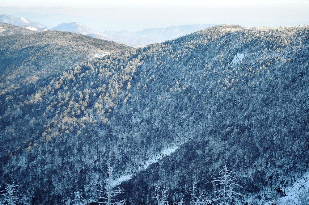 сихотэ-алинь, ливадийский, хребет, горы, тайга, иней, приморье, приморский, дальний восток, дальневосточный, Pete.J.Dunham