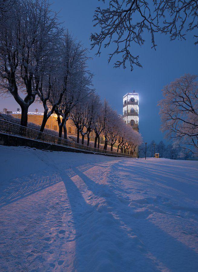 Гатчина, Гатчинский дворец, Зима, Alex Darkside