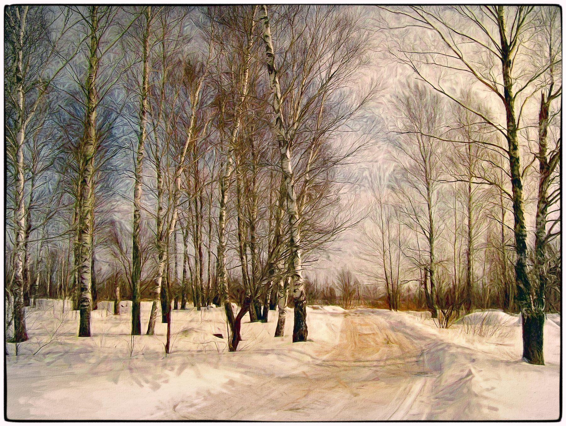 арт фото, березы, живопись, зимний пейзаж, картина маслом, пейзаж, плагин топаз, стилизация, фотошоп, Лидия Киприч