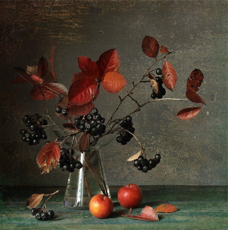 Листья, Натюрморт, Осень, Сливы, Чёрная рябина, Svetlana Tkachenko