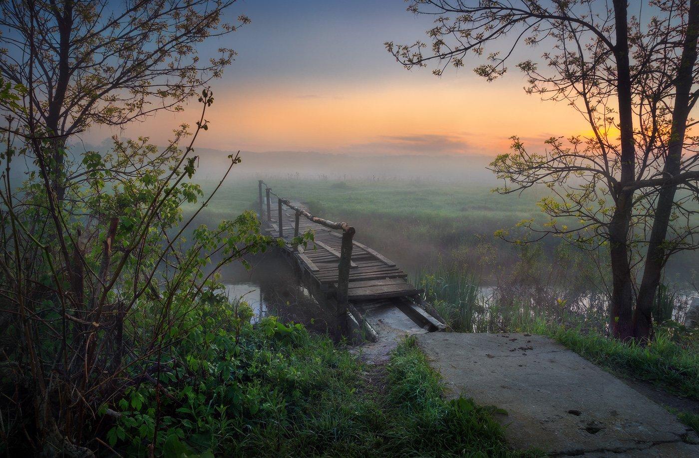 утро, пейзаж, река, туман, деревья, мостик, мосток, sony, Александр Киценко