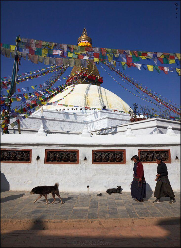 непал, гималаи, nepal, himalaya, катманду, kathmandu, Оксана Борц