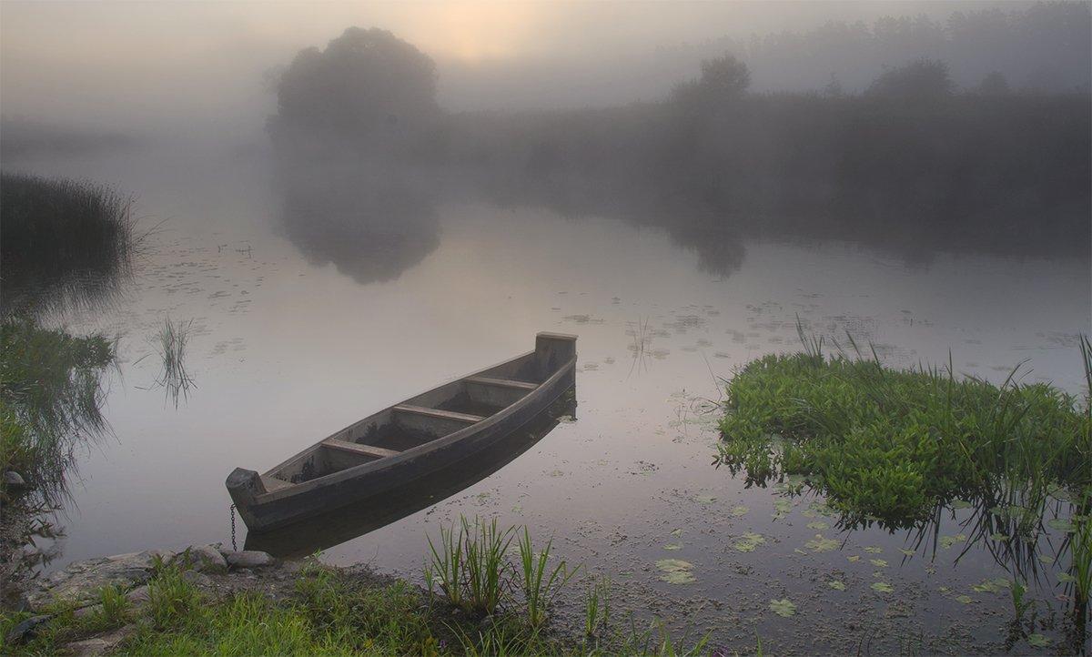 d3100, nikon, лето, пейзаж, природа, рассвет, река, россия, смоленская область, солнце, туман, угра, Денис Щербак