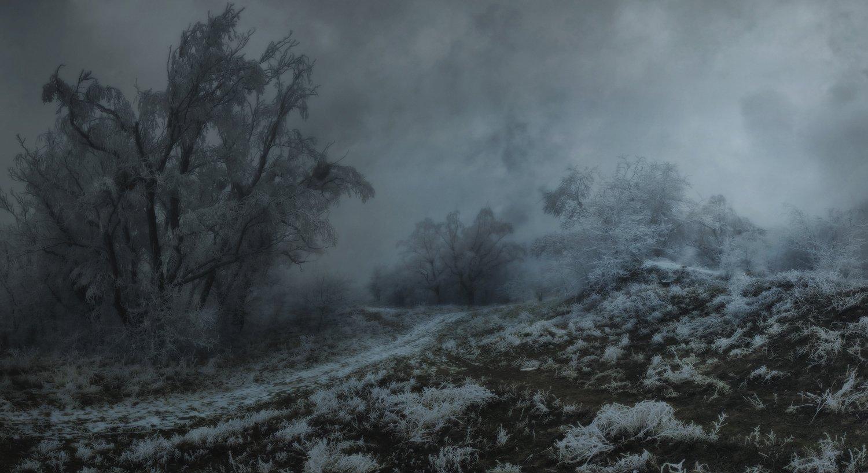 зима, природа , февраль, Михаил  Пилипенко