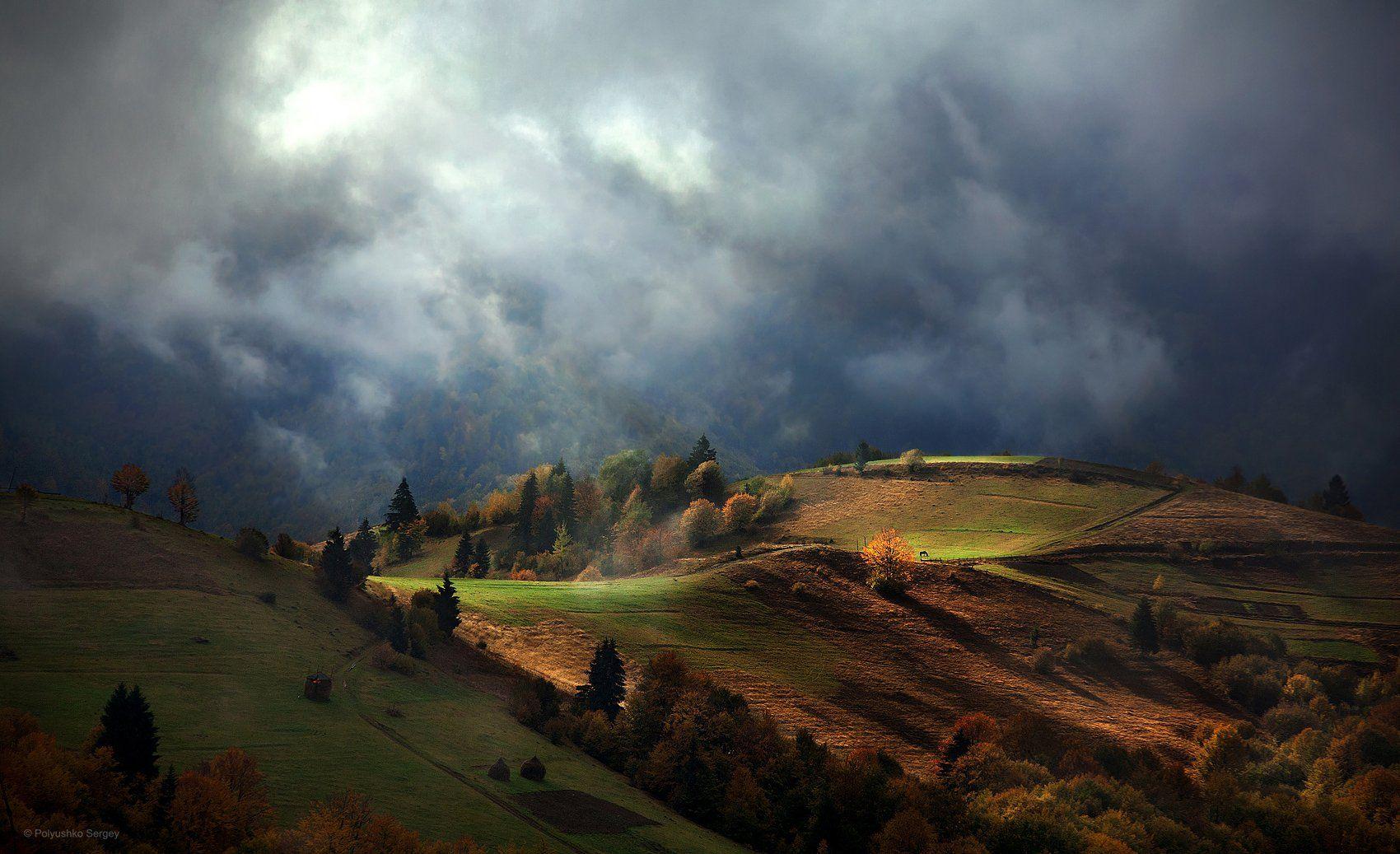 Карпаты, Осень, Полюшко Сергей