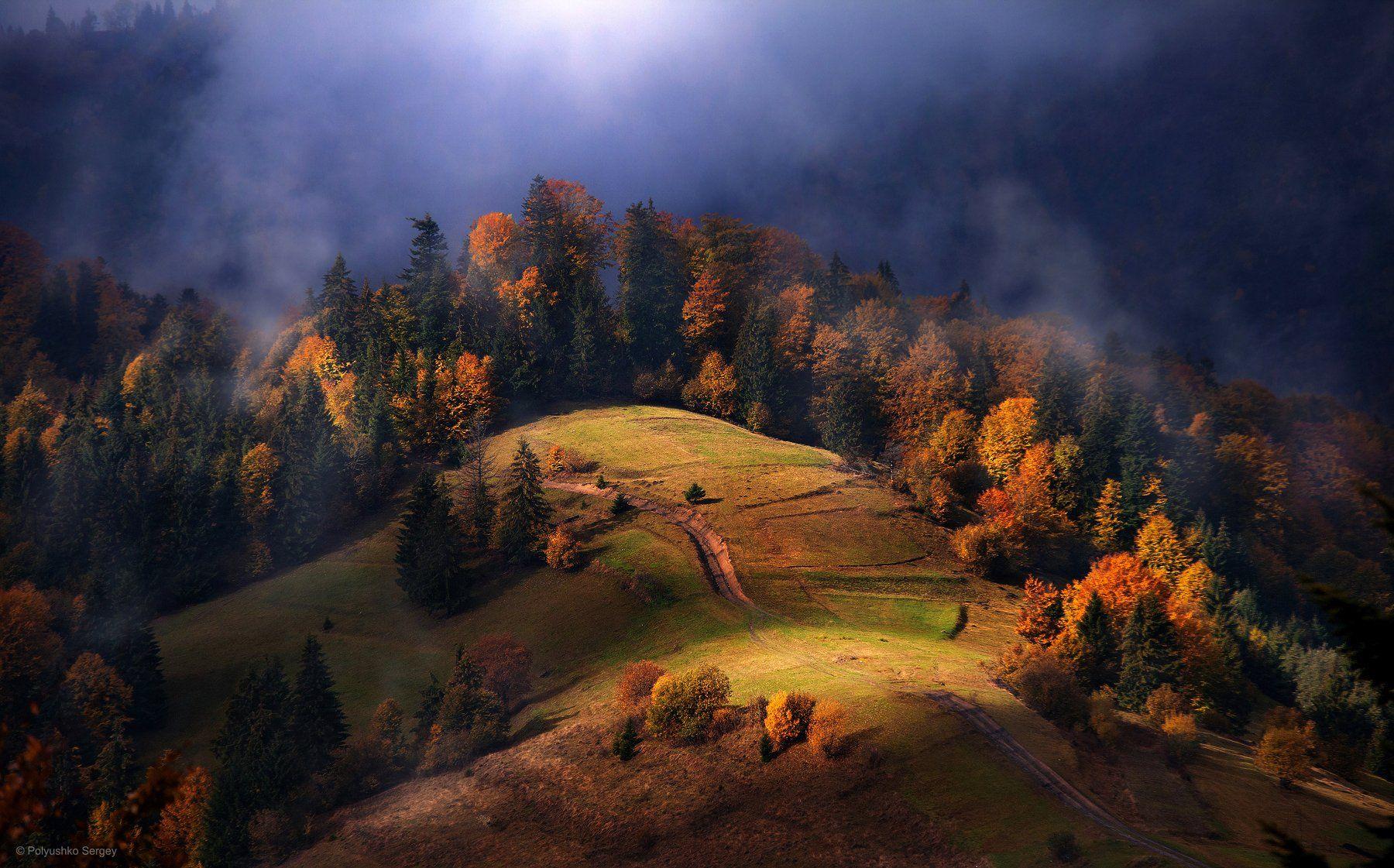 Горы, Карпаты, Осень, Туман, Полюшко Сергей