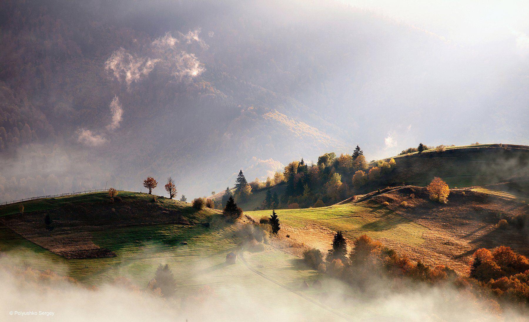 Горы, Карпаты, Осень, Полюшко Сергей