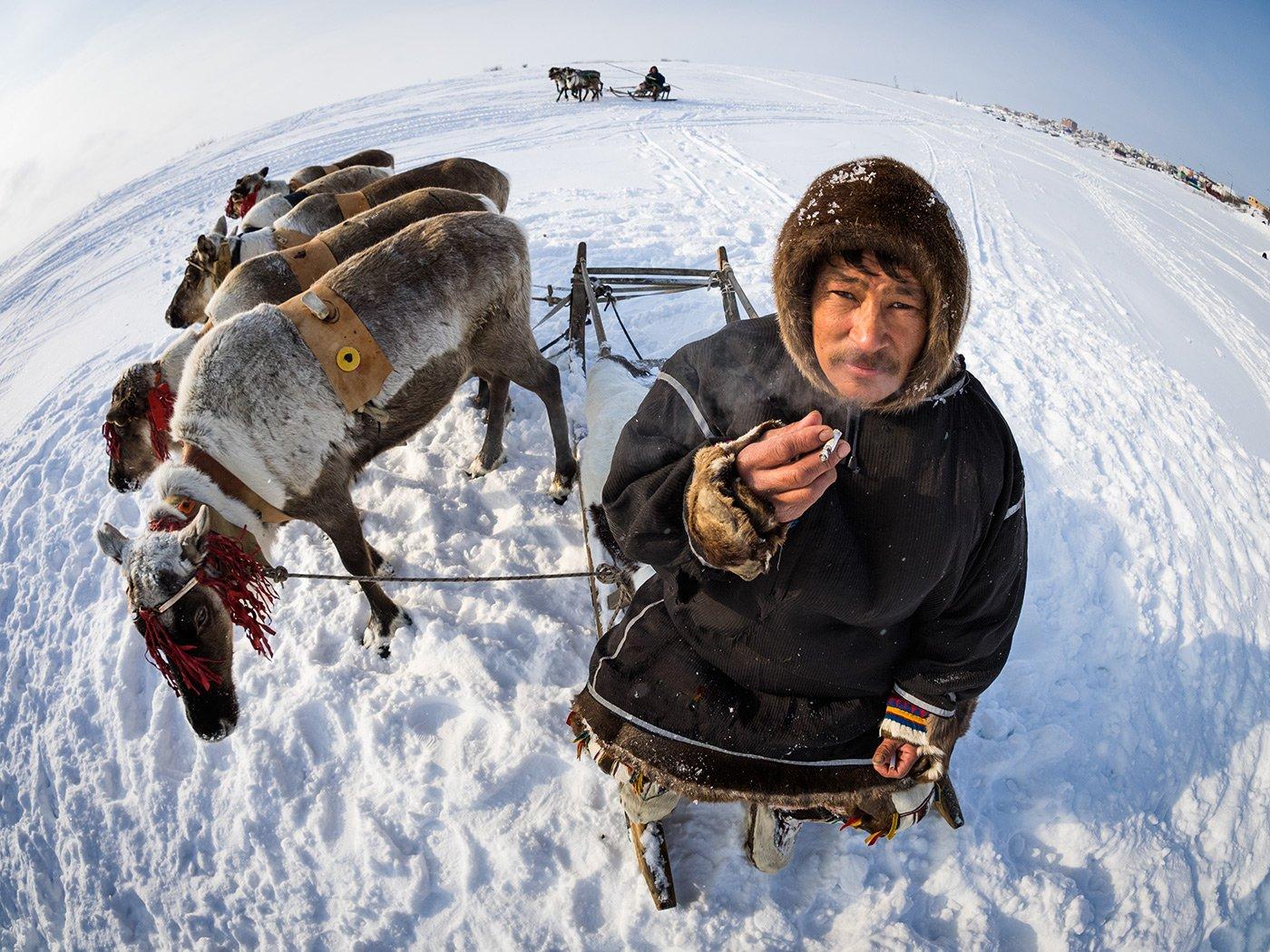 Россия, Сибирь, Ямал, Виктория Роготнева