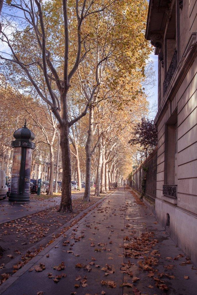 Paris, France, Илья Беленький