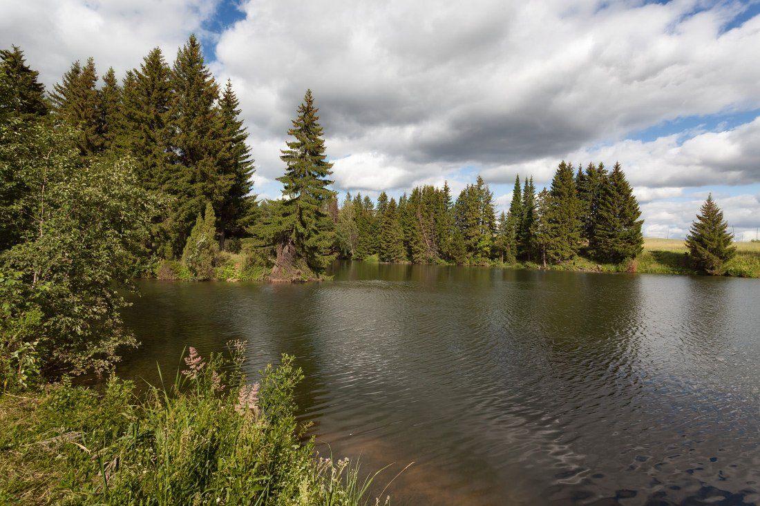 Озеро лес трава облака лето, Георгий Машковцев