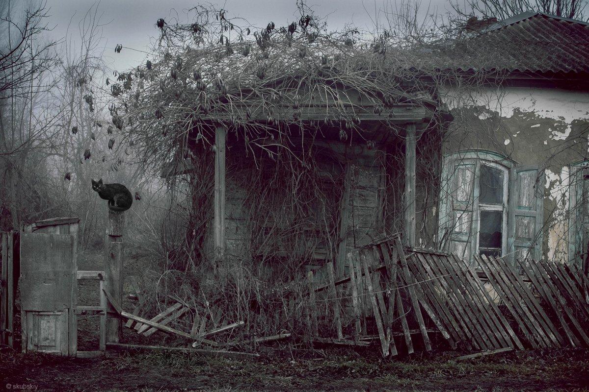 , Скубский Алексей