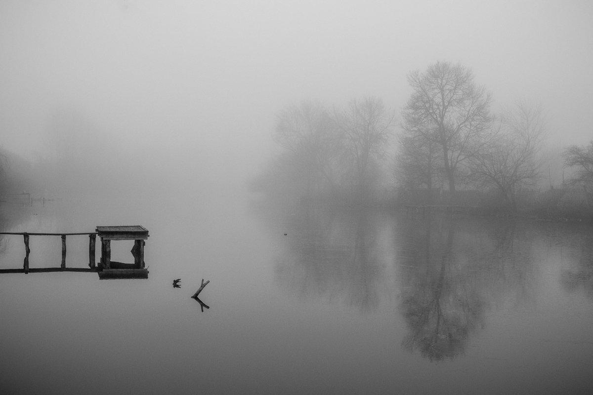 туман, Скубский Алексей