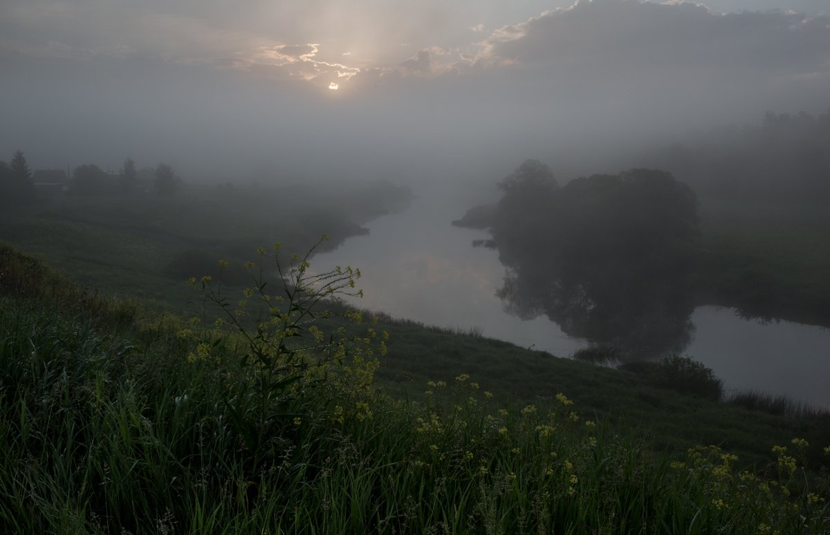 река ,туман ,утро ,рассвет, роса, река угра, Ирина Назарова