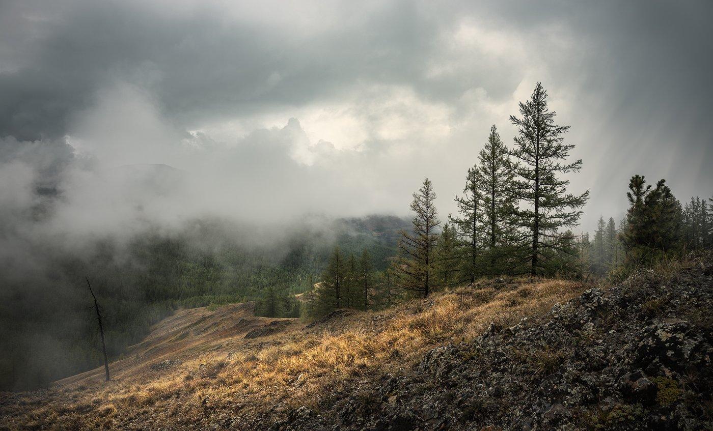 алтай, чуйские, белки, урочище, ештыкёль, горы, непогода, туман, природа, пейзаж, красивый, большой, высокий, облака, хмурые, дождь, панорама, Дмитрий Антипов