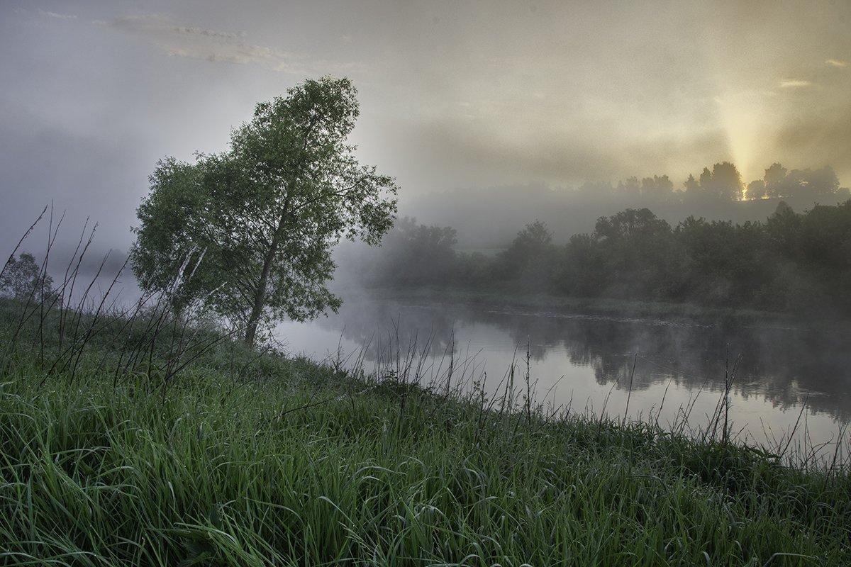 2016, D3100, Nikon, Лето, Ока, Пейзаж, Природа, Рассвет, Река, Россия, Тульская область, Туман, Денис Щербак
