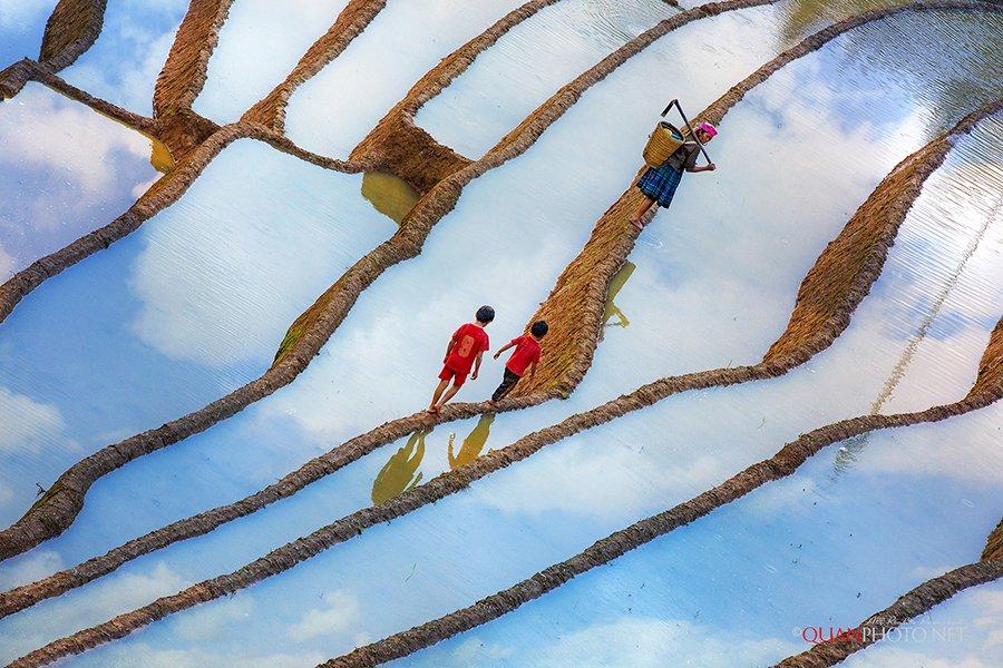 #quanphoto,#landscape,#reflections,#clouds,#surface,#ethnic_people,#children,#terraces,#paddies,#farmland,#agriculture,#mucangchai,#yenbai,#vietnam, quanphoto