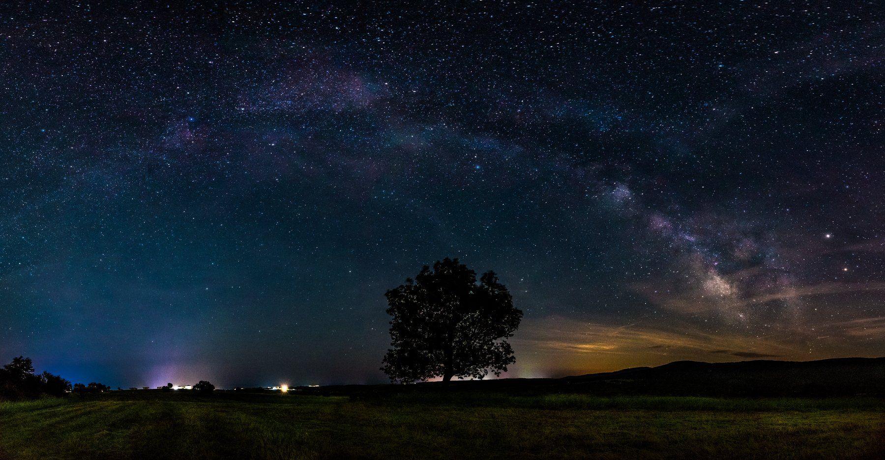 milky way, summer, night, star, tree, Jeni Madjarova