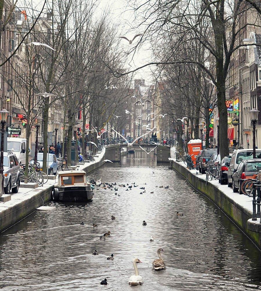 амстердам, Slowhill