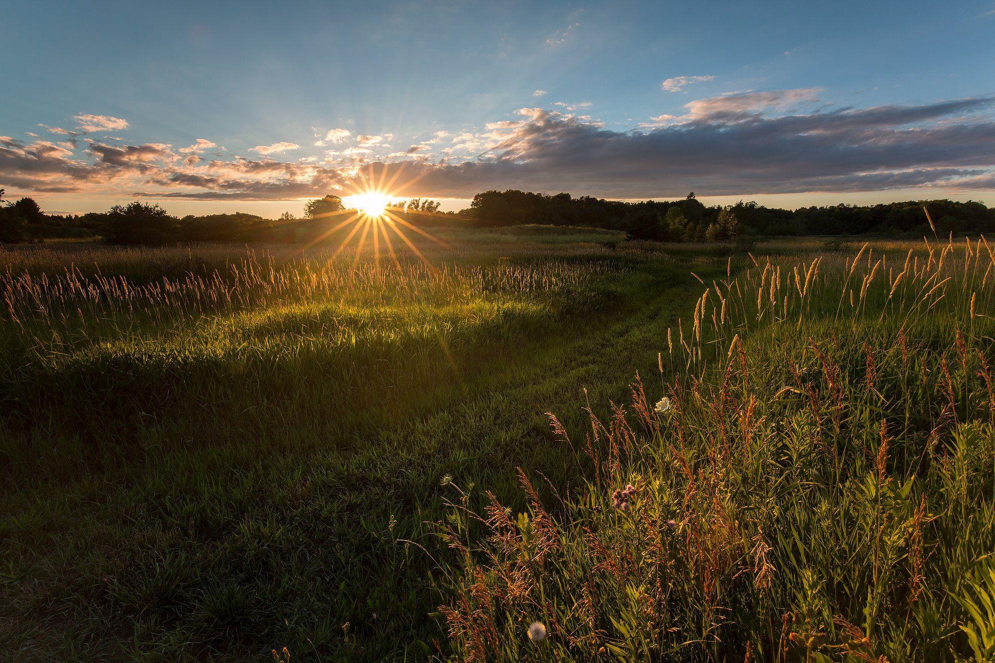 Clouds, Field, Sun, Sunset, Закат,, Облака,, Поле,, Солнце,, G A S