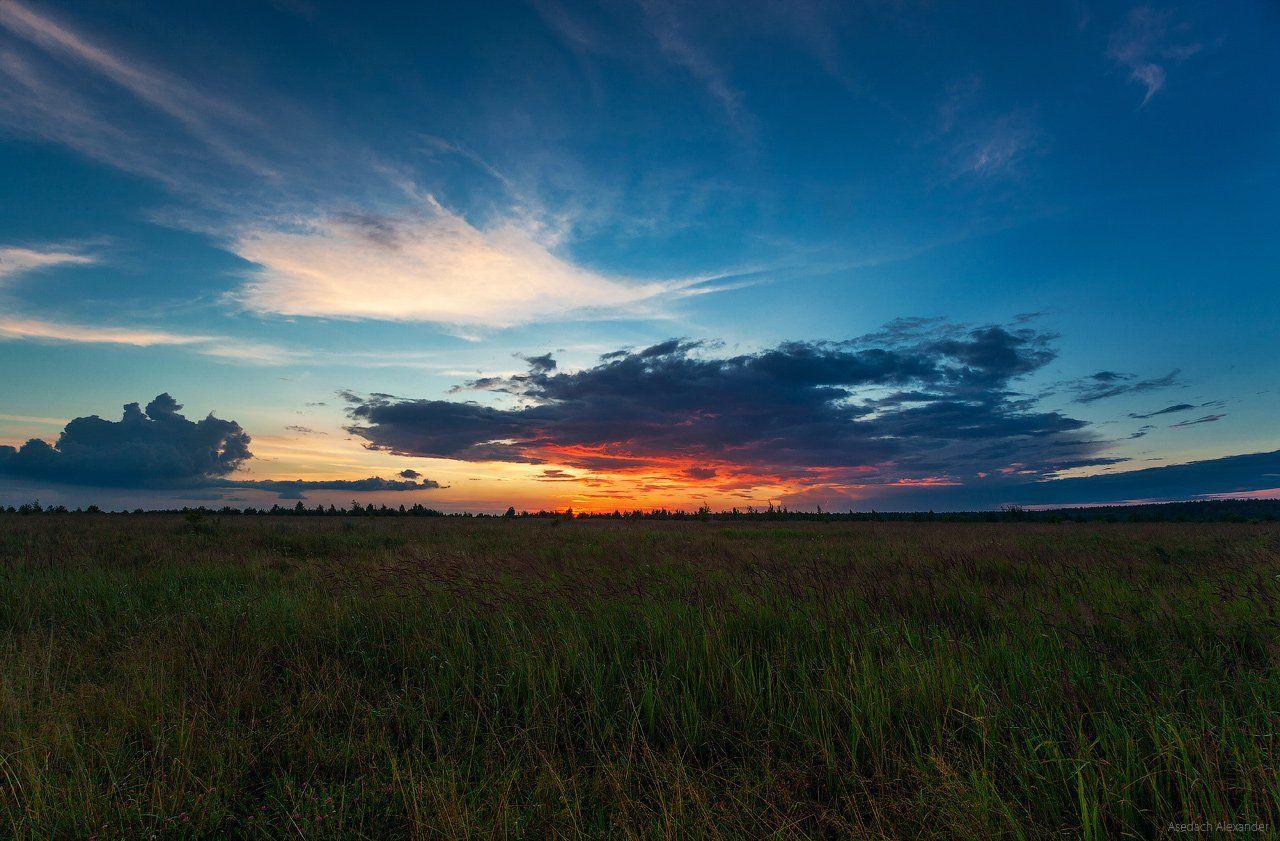 sunset, landscape, sky, nature, russia, закат, пейзаж, трава, небо, вечер, россия, Asedach Alexander
