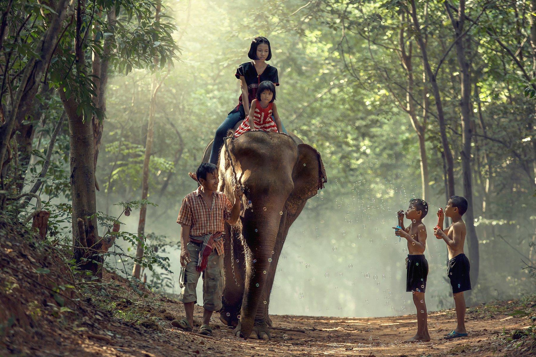 elephant,family,children,girl,boy,life,asia,people,, SUTIPORN SOMNAM
