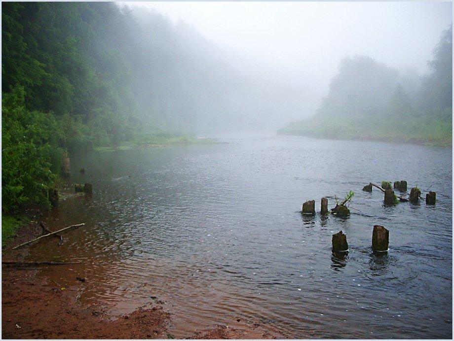 пейзаж,туман,река,лес, Андрей,любитель 35photo