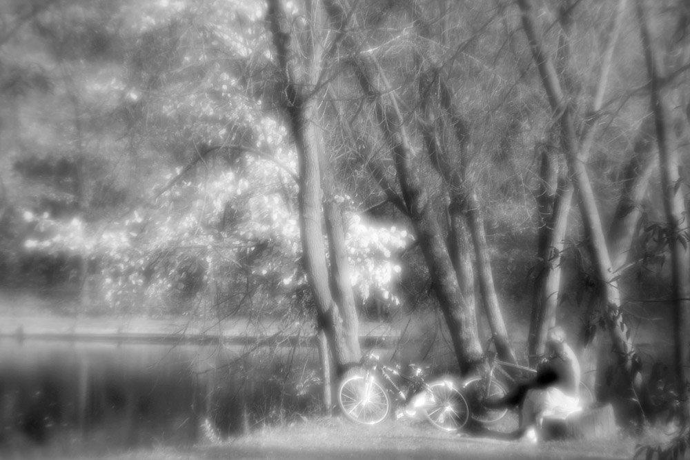 монокль, природа, пруд, nadyk