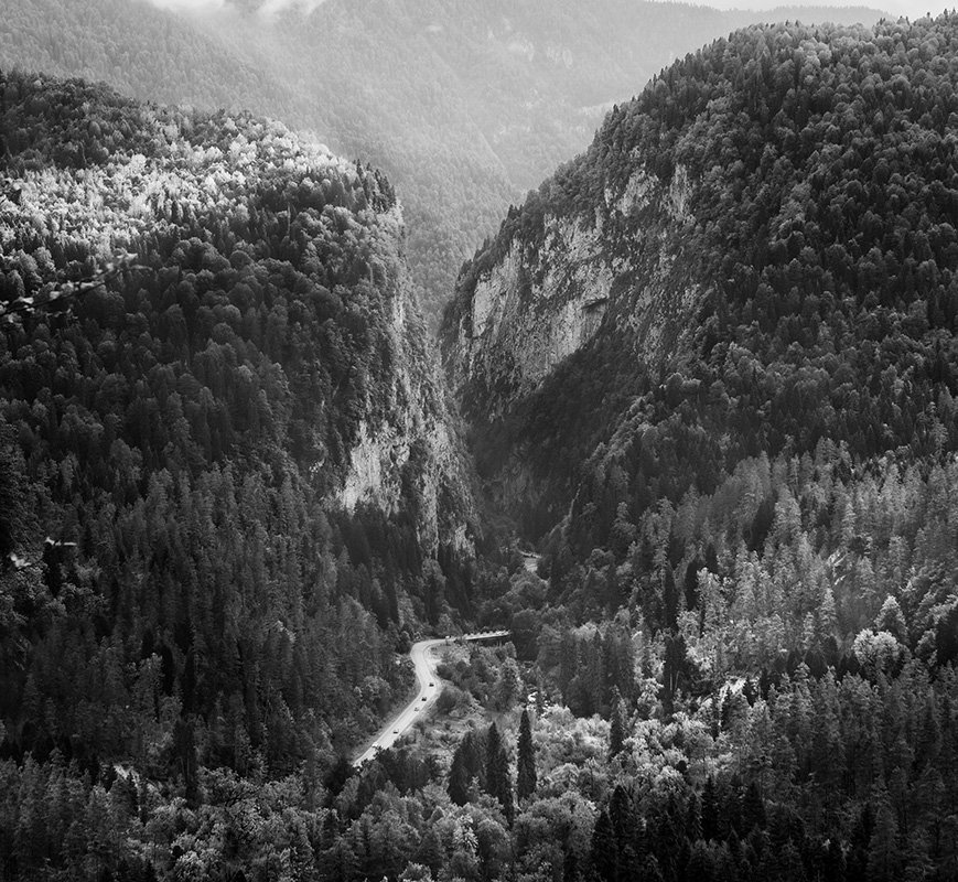рица, абхазия, природа, парк, горы, дорога, отдых, лес, Пантелеев Алексей