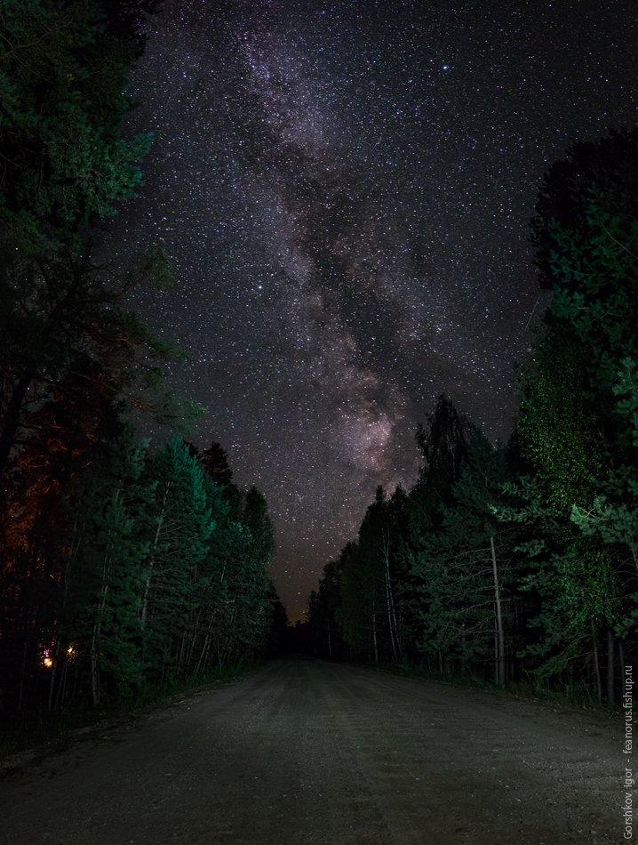 дорога, звёздное небо, звёзды, лес, млечный путь, ночное небо, ночной пейзаж, ночь, пейзаж, Горшков Игорь