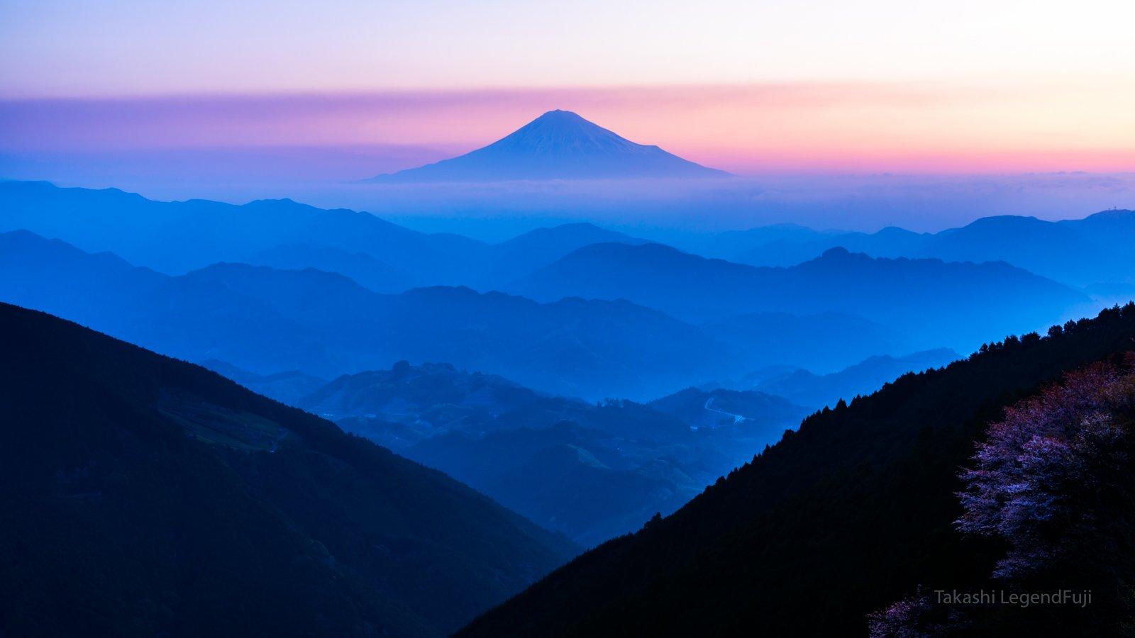 Fuji,mountain,Sakura,cherry,morning,dawn,blue,pink,beautiful,amazing,, Takashi
