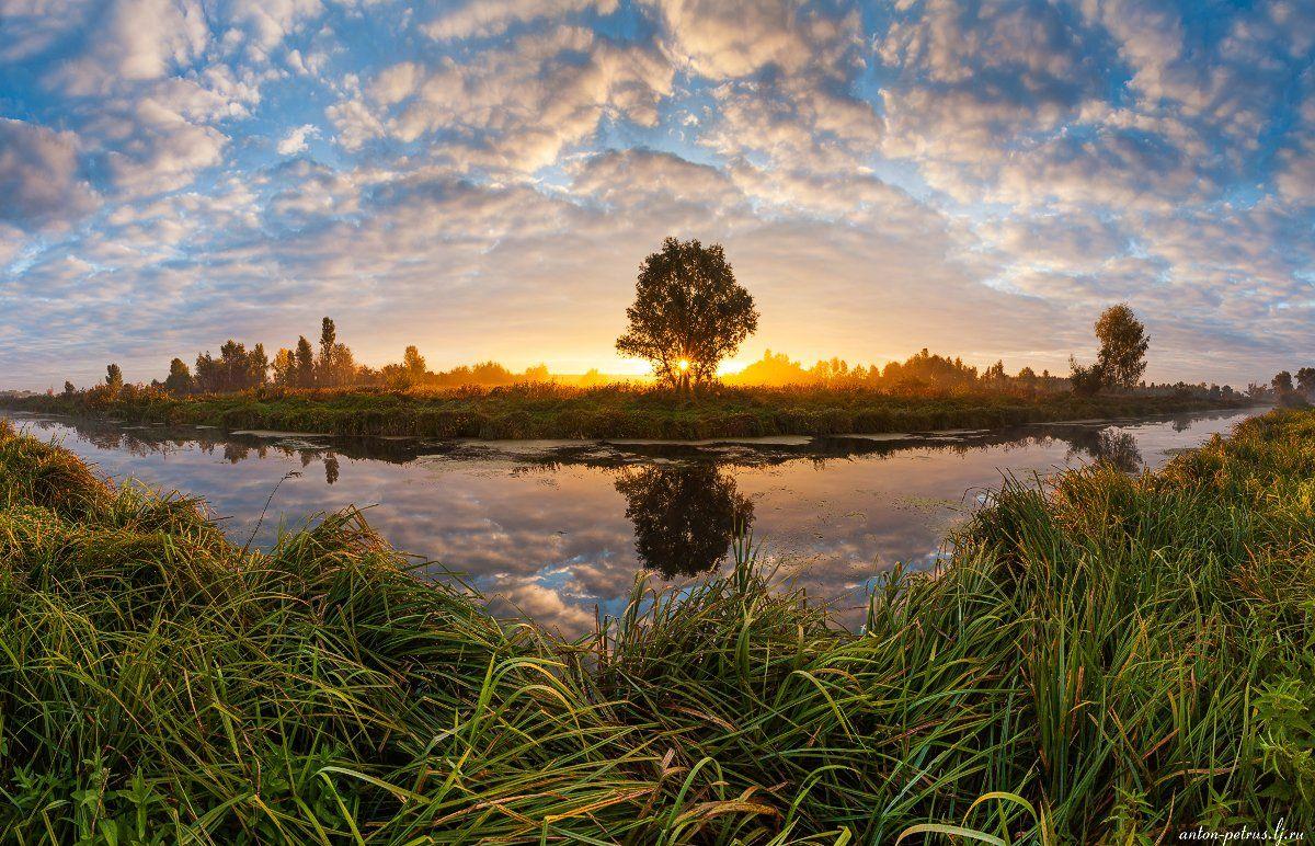 Осень, Рассвет, Река, Туман, Антон Петрусь
