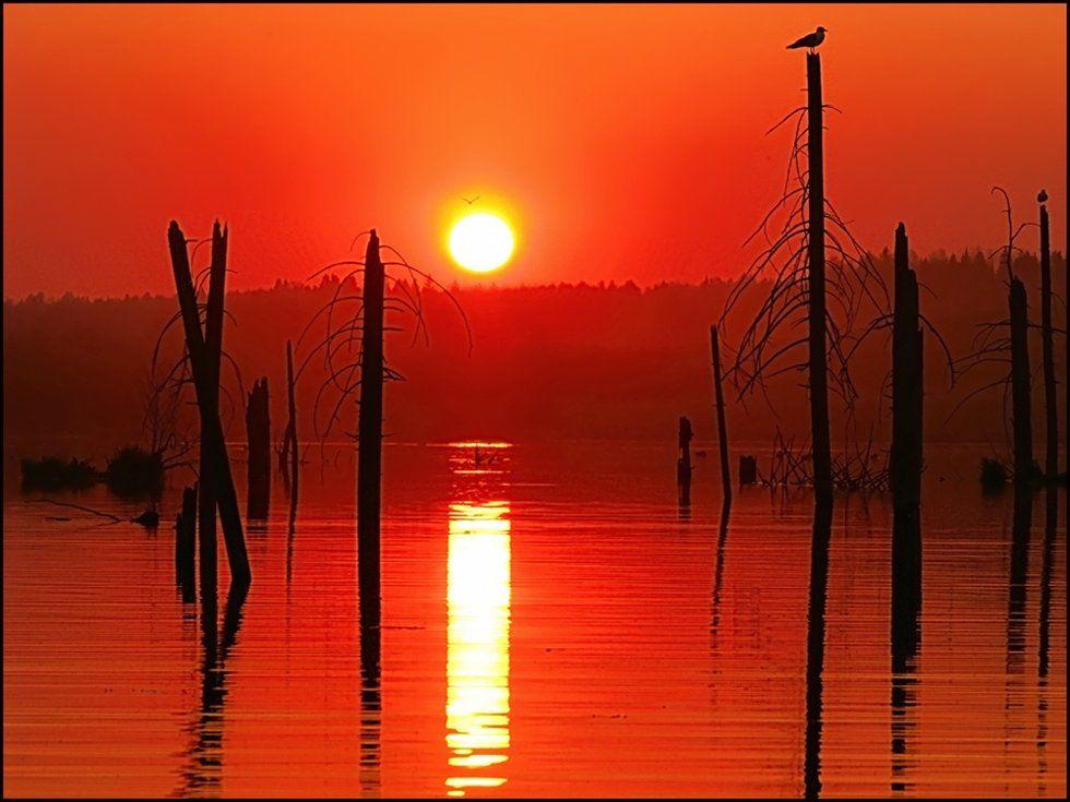 закат,небо,пейзаж,пруд,удмуртия, Андрей,любитель 35photo