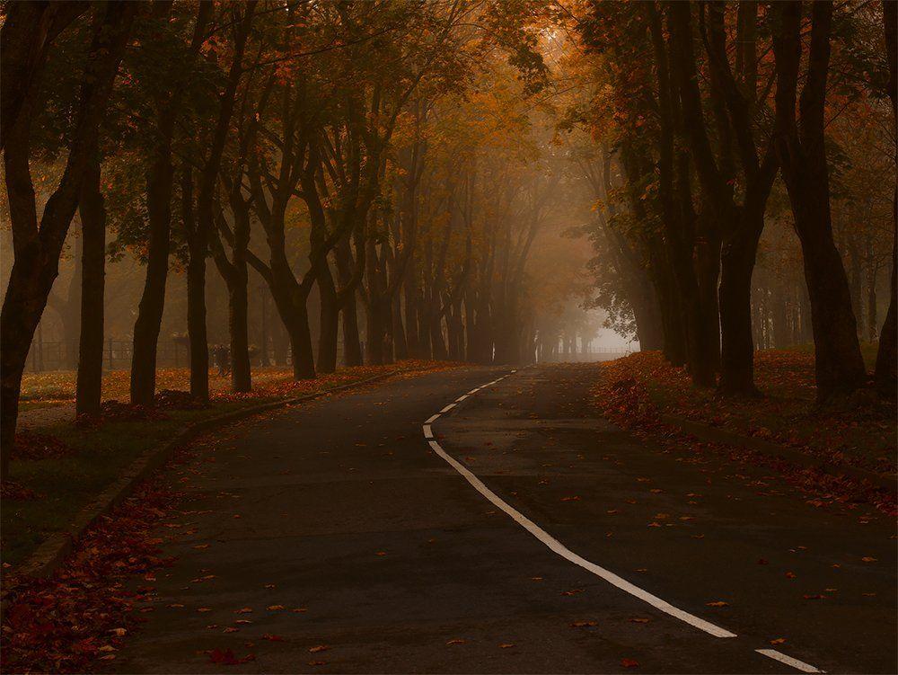 Нарва, Осень, Туман, Утро, Kljuchenkow Aleksandr