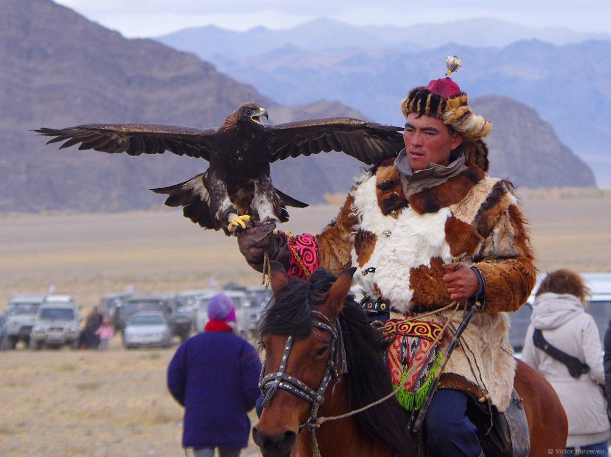 беркут, монголия, орел, охотник, беркутчи, Виктор Борзенко
