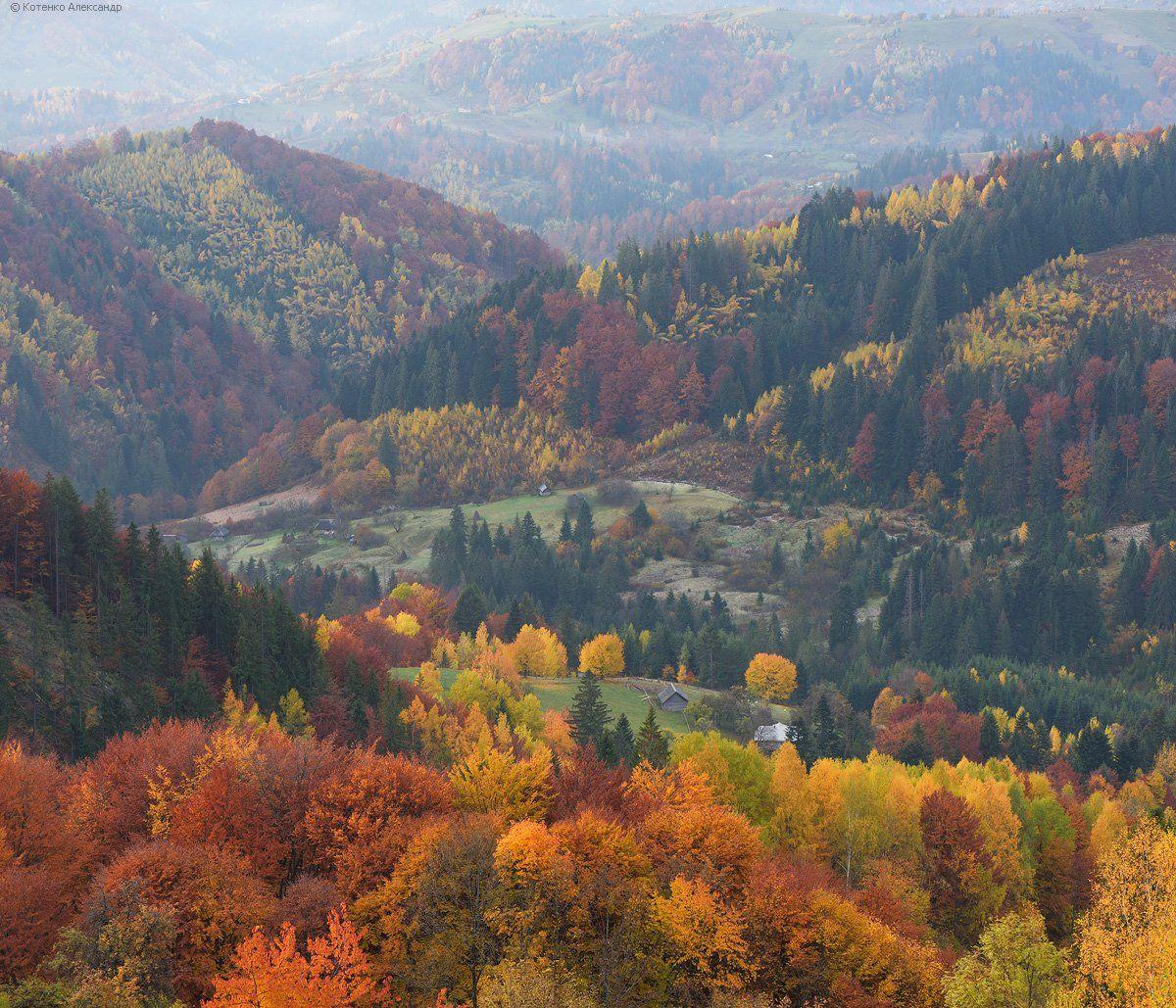 Горы, Карпаты, Осень, Александр Котенко