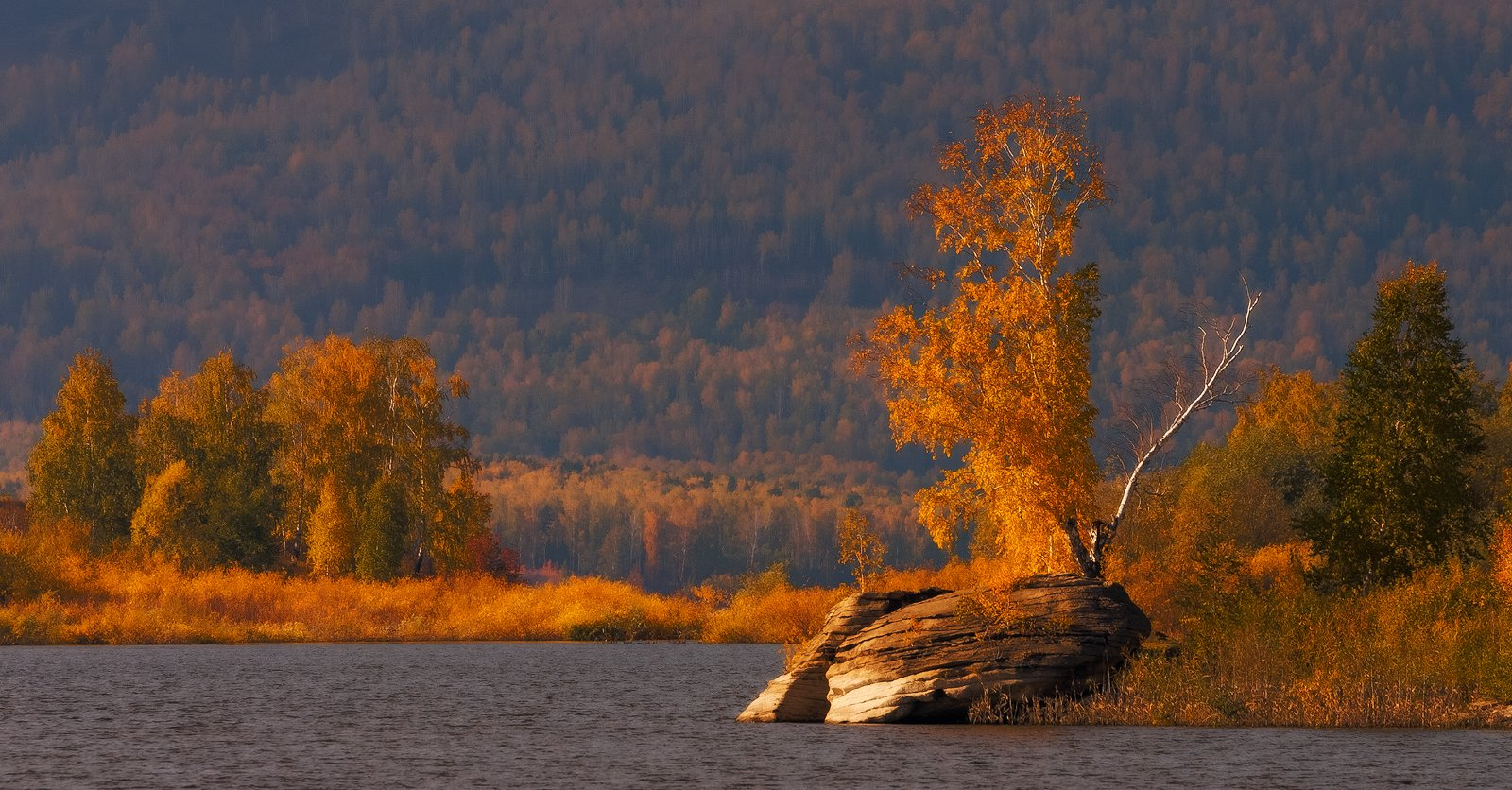аргази, золотая осень, озеро, осень, Михаил Трахтенберг ( t_berg )