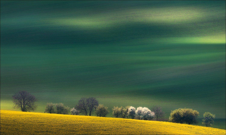 Чехия, Южная Моравия, Czech, South Moravian, весна, линии, формы, свет, Влад Соколовский