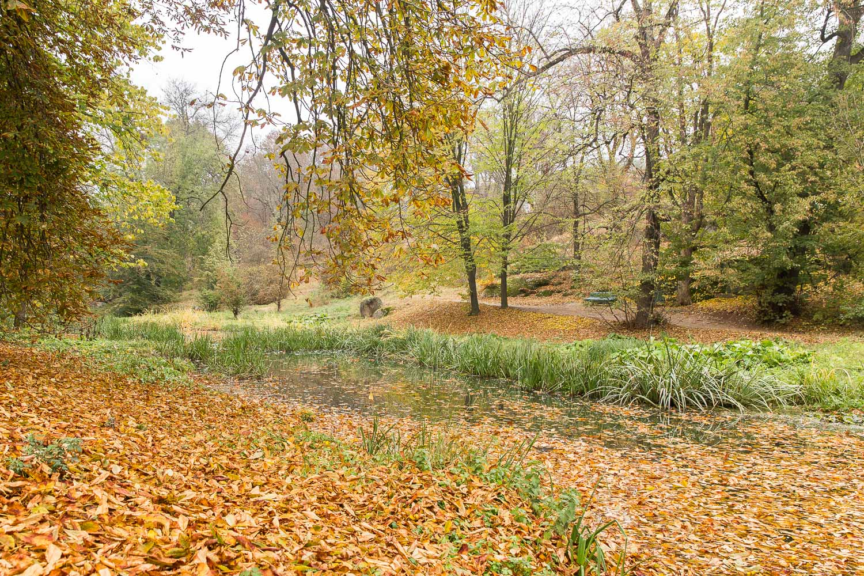 осень, парк, Умань, Софиевка, листья, ручей, скамейка, Илья Беленький