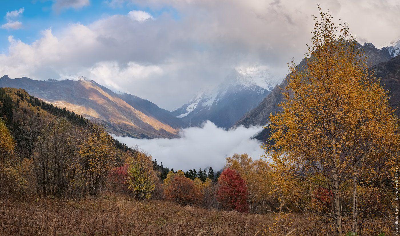 домбай, горы, кавказ,туман, осень, панорама, пейзаж, Горшков Игорь