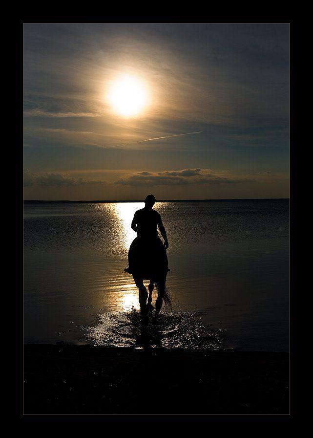 озеро, лошадь, закат, tolyan139