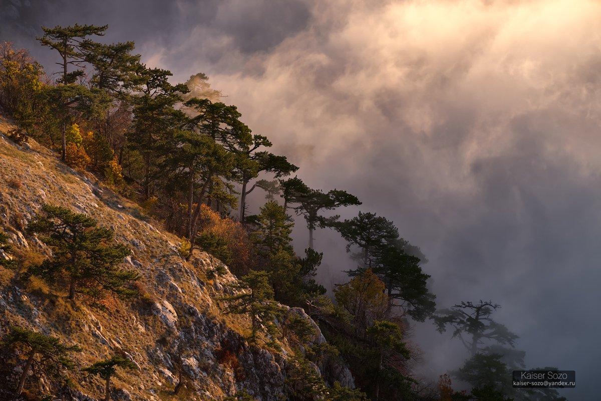 крым, ай-петри, туман, рассвет, Kaiser Sozo